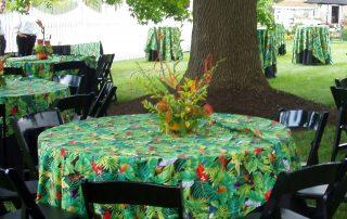Tremendous Party Rentals In St Louis Weinhardt Party Rentals Squirreltailoven Fun Painted Chair Ideas Images Squirreltailovenorg